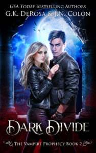 Dark-Divide-ebook-300-DPI copy